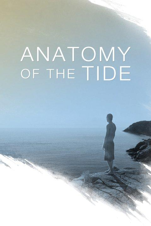 Anatomy of the Tide