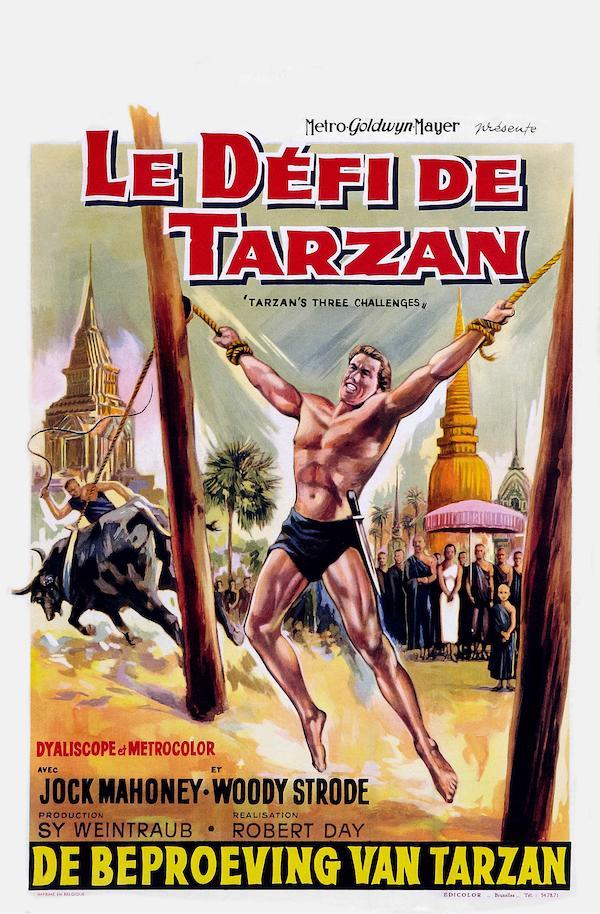 Tarzan's Three Challenges 1700x2590
