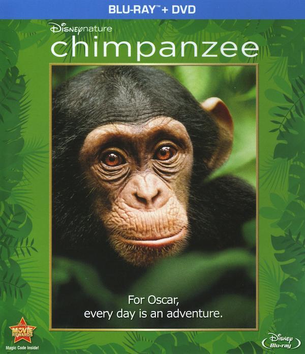 Chimpanzee 2004x2322